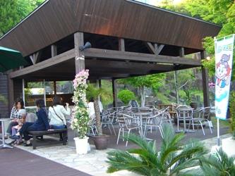 shimacafe4.jpg