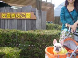 佐倉キノコ園