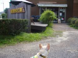 佐倉キノコ園2