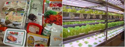 seoul food 4