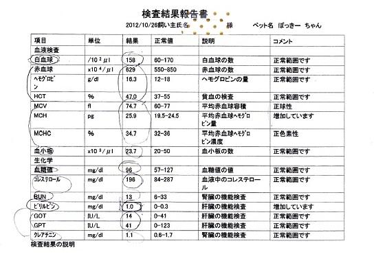 2012.10.26 血液検査