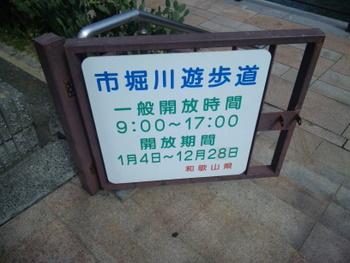 101016_113010.jpg