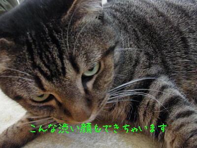 RIMG0134.jpg