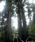 kozawa538さんのブログ-20100919142319.jpg