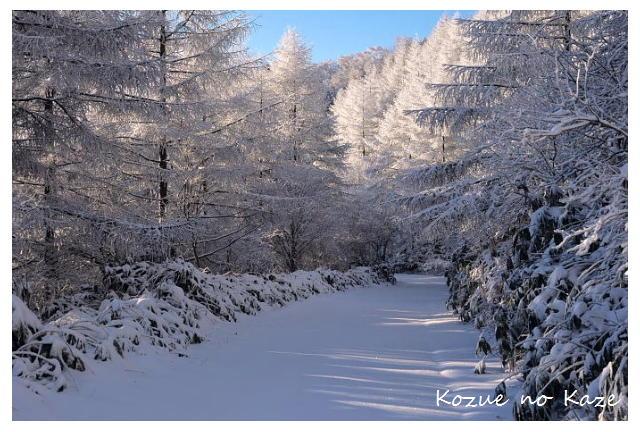 雪の景24