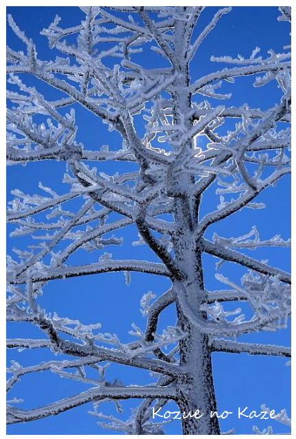 雪の景34