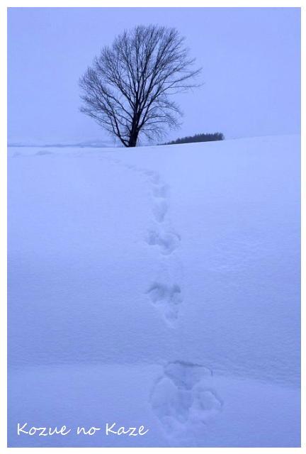 雪の景30