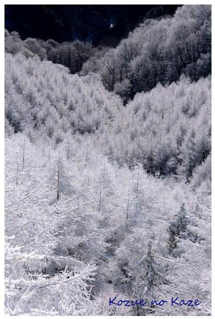 雪の景38