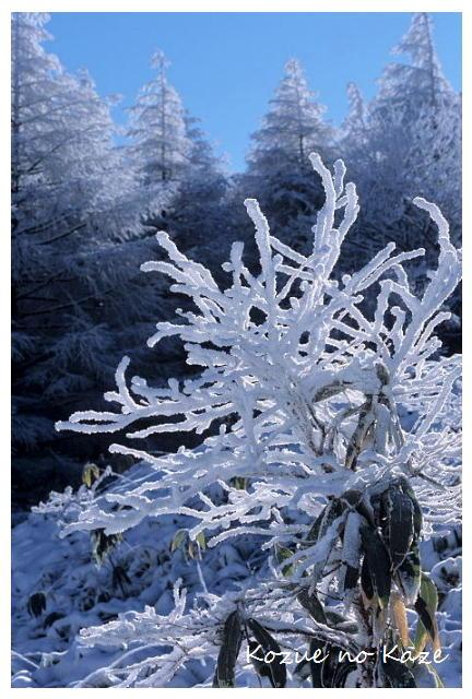 雪の景32