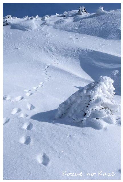 雪の景39