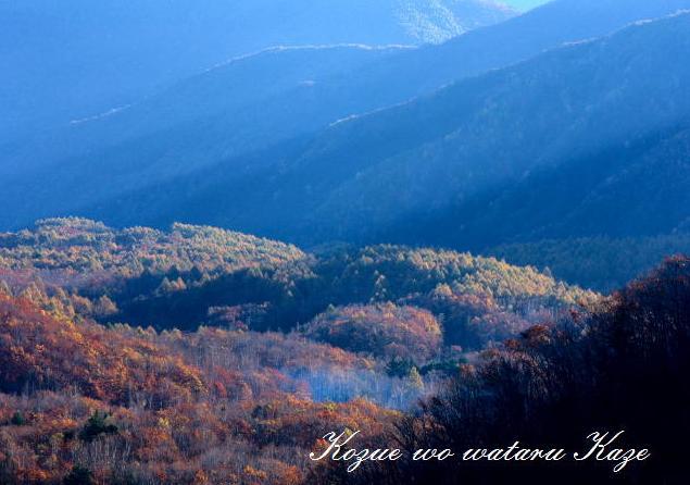 紅葉の山3