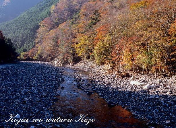 紅葉の渓4
