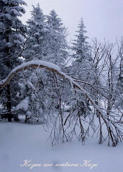 冬の情景4