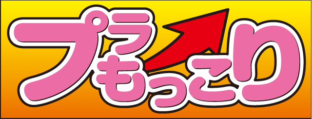plamokkori_02.jpg