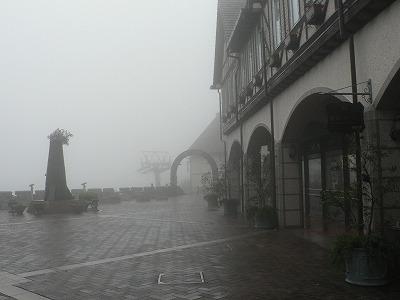 ハーブ園は雨の中