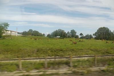 ブザンソンへ向かう車中から農地を見る