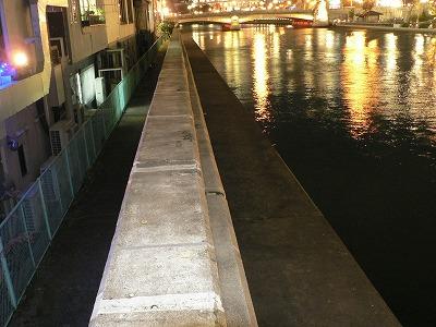 大川堤防の両側に空間があります