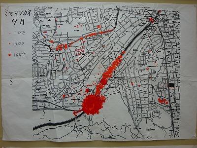 ミヤマアカネの分布図