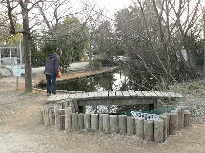 垂水下水処理場のビオトープ