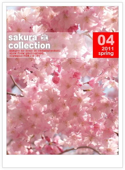 1104sakuracollection13
