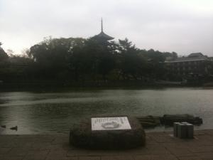 sarusawa0416_convert_20110416115226.jpg