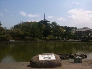 sarusawa0427_convert_20110427165219.jpg