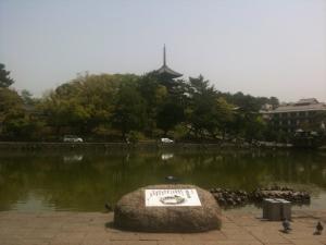sarusawa0504_convert_20110504113359.jpg