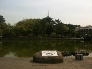 sarusawa0506_convert_20110506103440.jpg