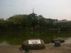 sarusawa0509_convert_20110509113116.jpg
