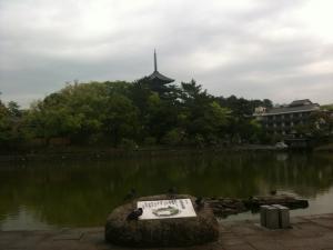 sarusawa0510_convert_20110510104004.jpg