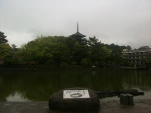 sarusawa0511_convert_20110511111508.jpg