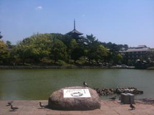 sarusawa0514_convert_20110514112454.jpg