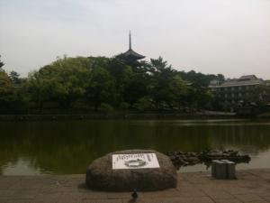 sarusawa0516_convert_20110516112721.jpg