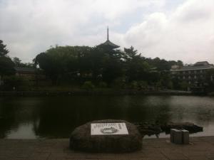 sarusawa0702_convert_20110702113255.jpg
