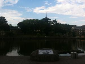 sarusawa0710_convert_20110710174358.jpg