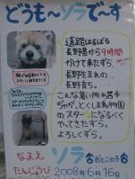 とくしま動物園_12