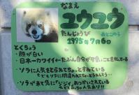 とくしま動物園_9