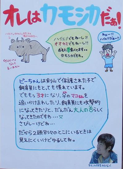 とくしま動物園_18