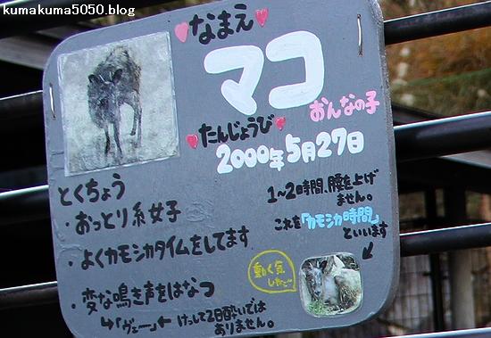 とくしま動物園_16