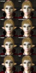 Lop-ears.jpg