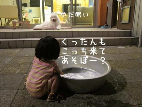20110912_05.jpg