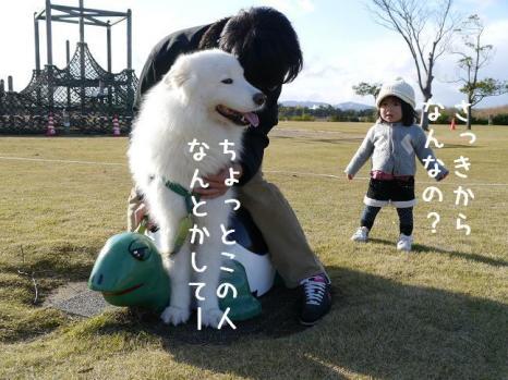 20111204_09.jpg