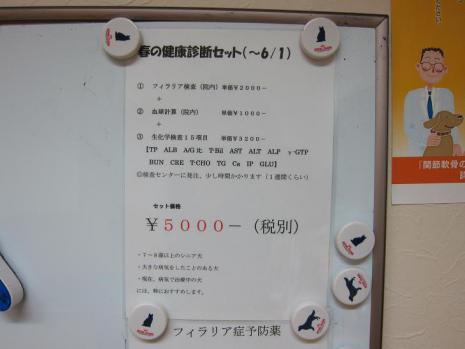 20120529_02.jpg