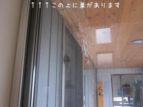 20120711_09.jpg