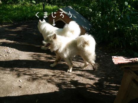 20120829_22.jpg