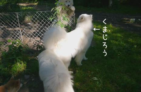20120829_23.jpg