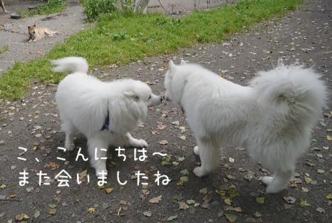 20120830_04.jpg