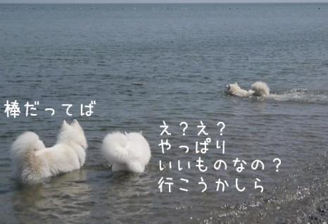 20120830_07.jpg