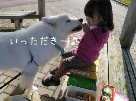 20121104_05.jpg