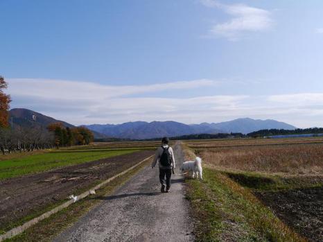 20121124_25.jpg